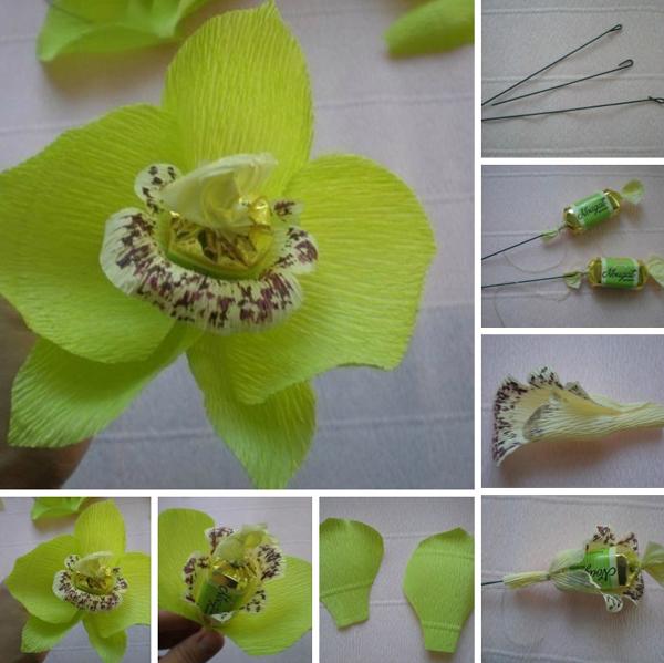flor de crepom orquidea