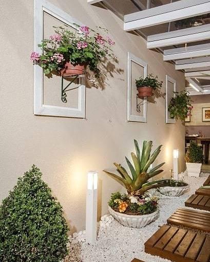 molduras com plantas