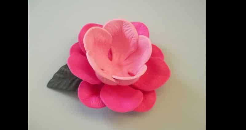 rosa eva