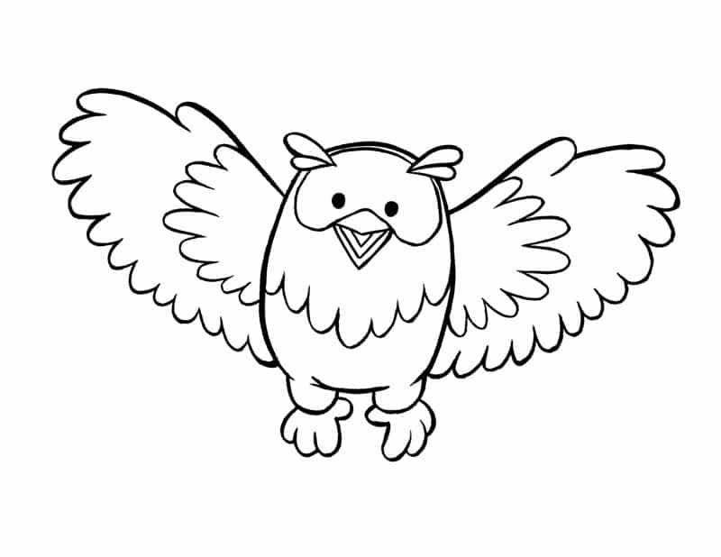 desenho de coruja asas abertas