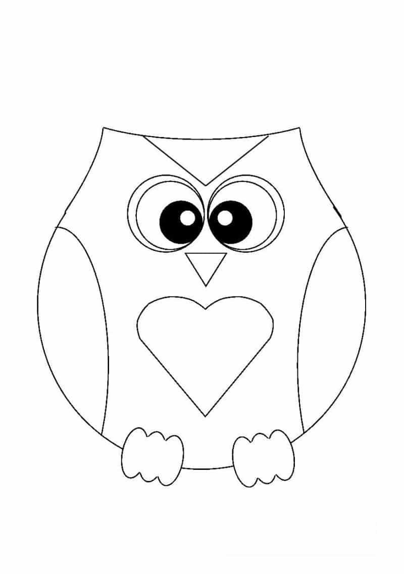 desenho de coruja coração