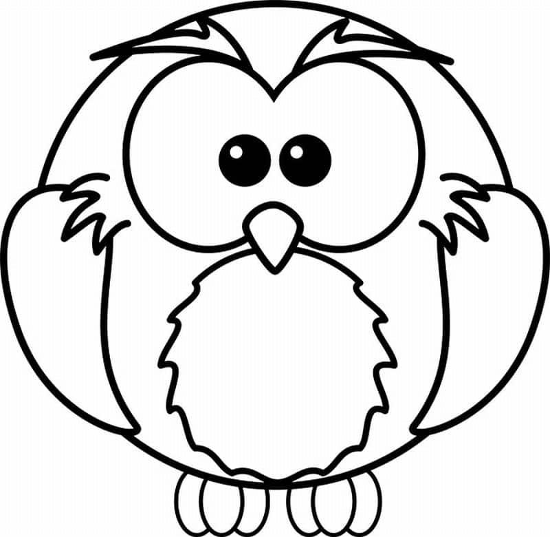 desenho de coruja bola