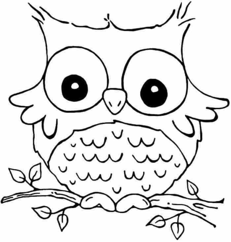 desenho de coruja simples
