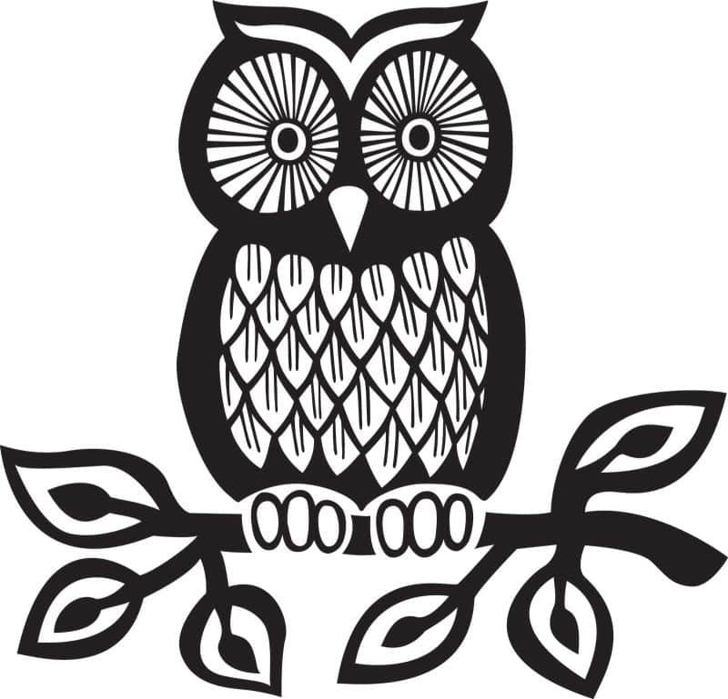 desenho de coruja galho