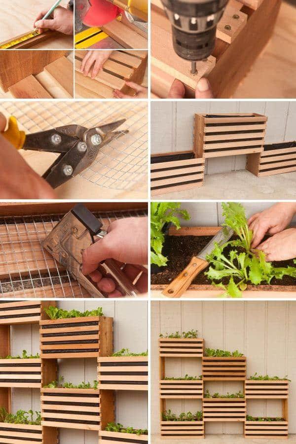 Vegetable Garden Design Ideas Layout