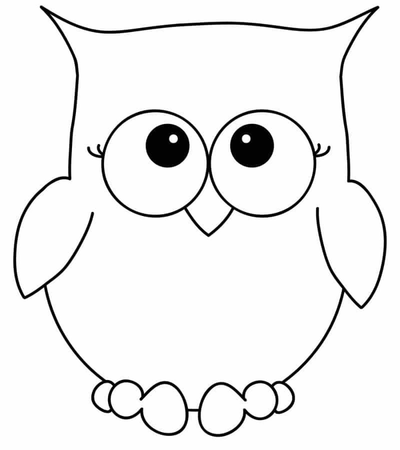 desenho de coruja fofa