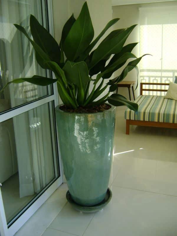 Vasos decorativos para sala 30 ideias criativas - Plantas grandes para interiores ...