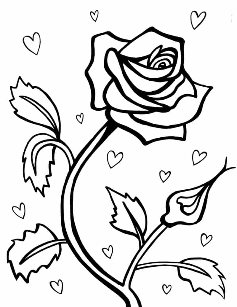 Desenho De Rosas Para Colorir 20 Imagens Para Imprimir