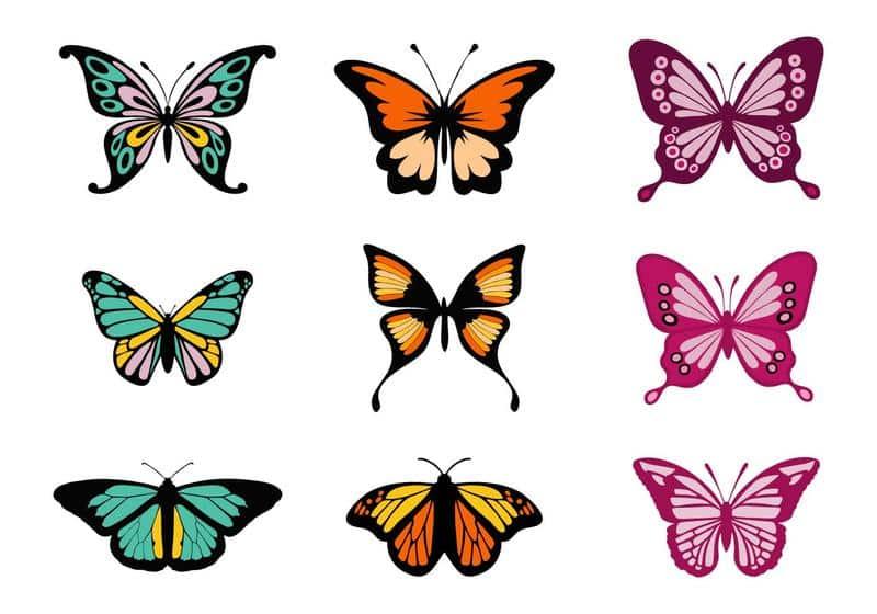 Borboleta Para Colorir Desenho 30 Imagens Para Imprimir