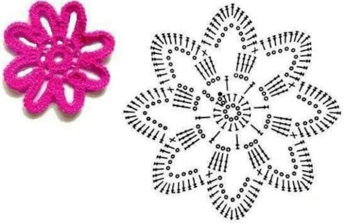 flor e grafico