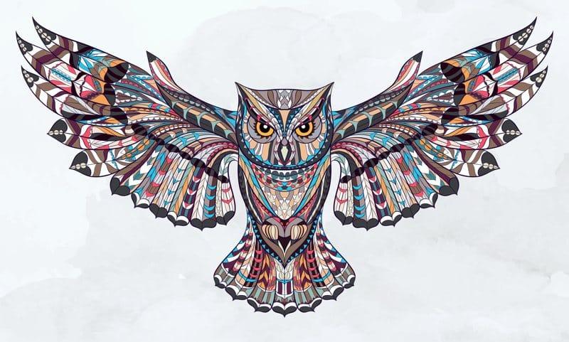 30 Imagens De Corujas Em Desenho Para Colorir Lindas E Fofas