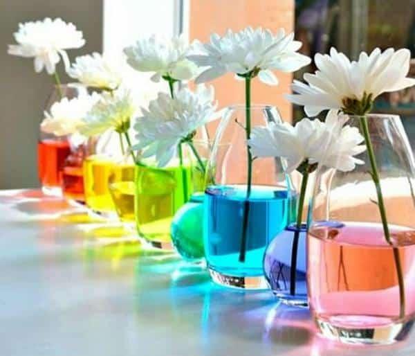 Vasos decorativos com água colorida
