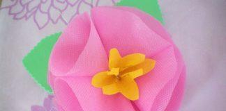 Flor tnt rosa