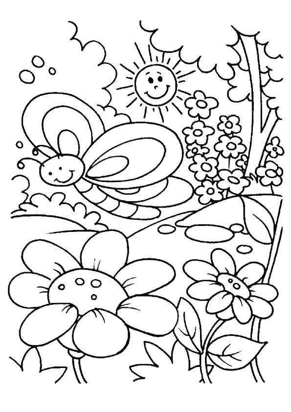 Borboletas primavera