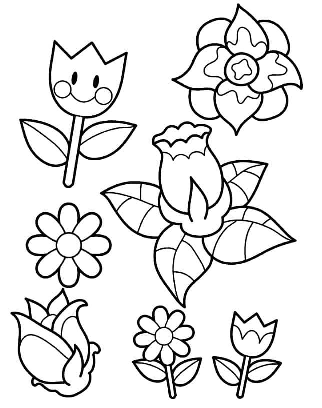 Flores pequena