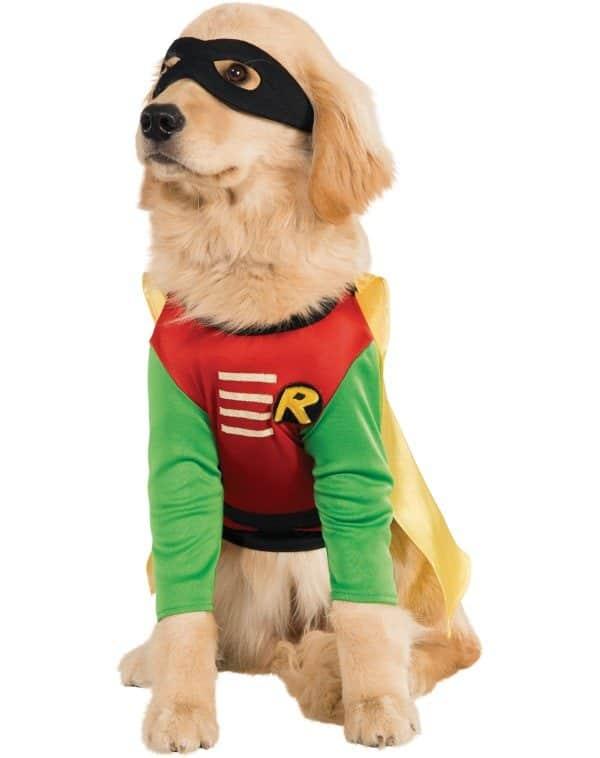 Cachorro fantasiado de Robin