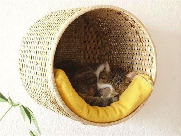 cesto-para-gato