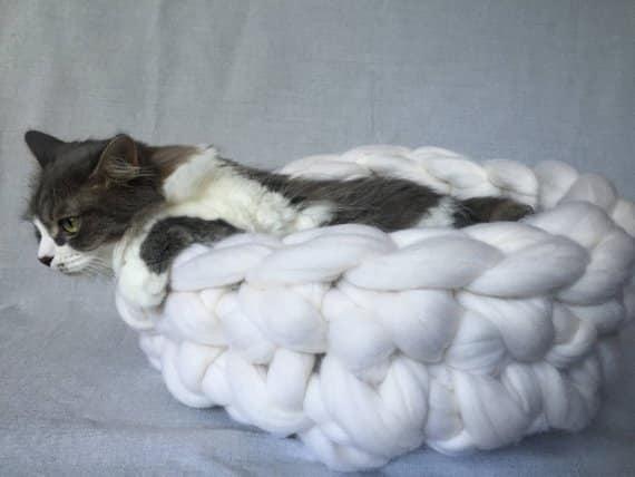 gato em cesto de tecido
