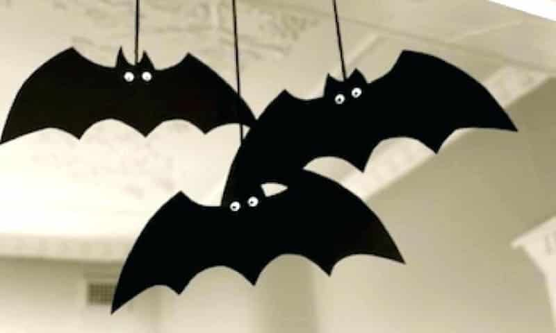 morcego pendurado
