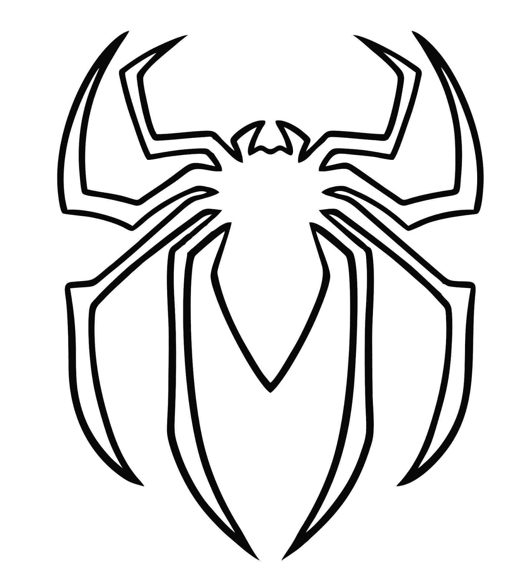 Aranha para colorir