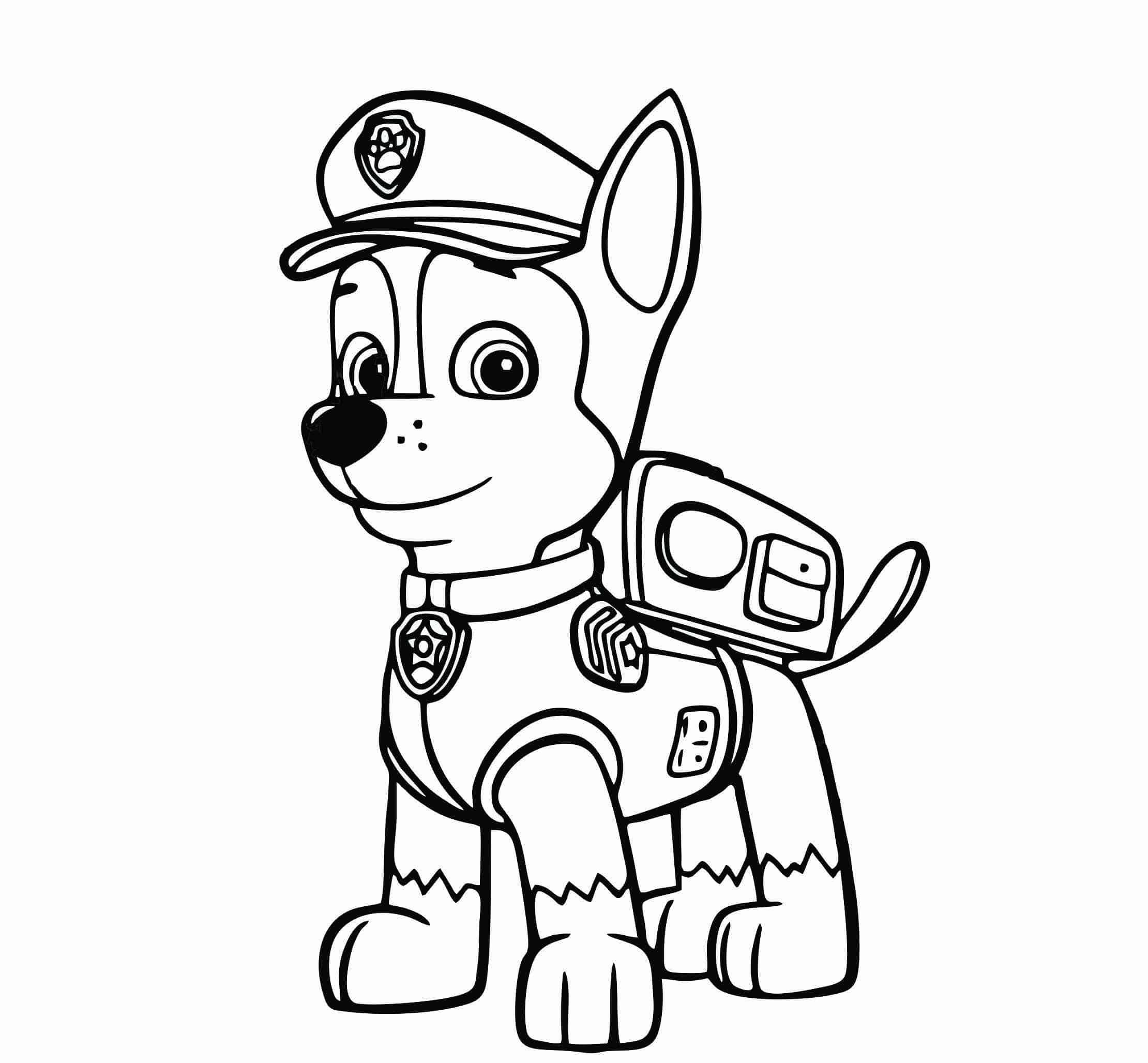 patrulha canina colorir chase