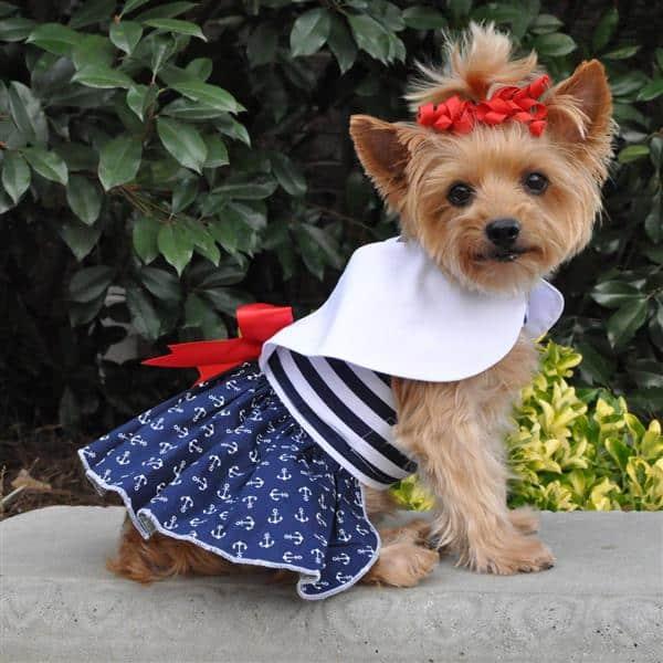 Molde de roupa de cachorro