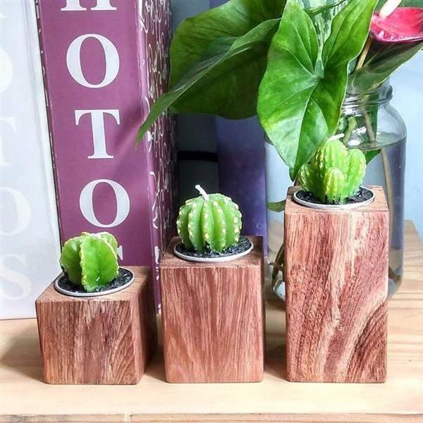 artesanato em madeira para plantas