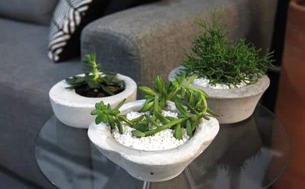 vaso de cimento para decoração
