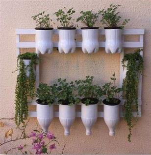 horta de vasinhos