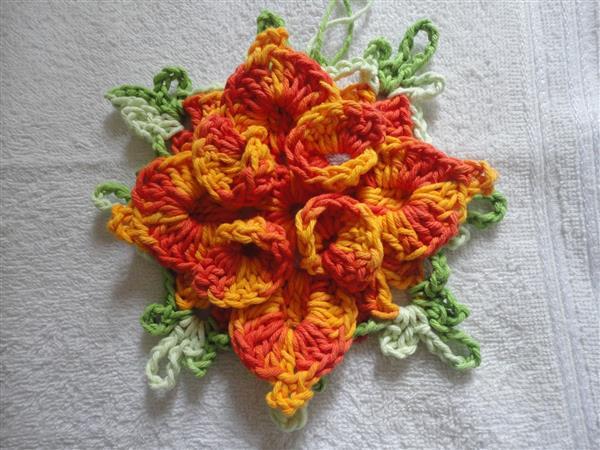 flor catavento