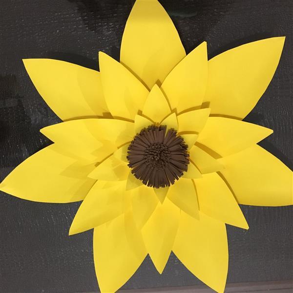 girassol-gigante-flor-gigante