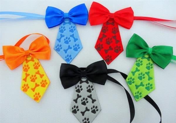 gravata patinhas