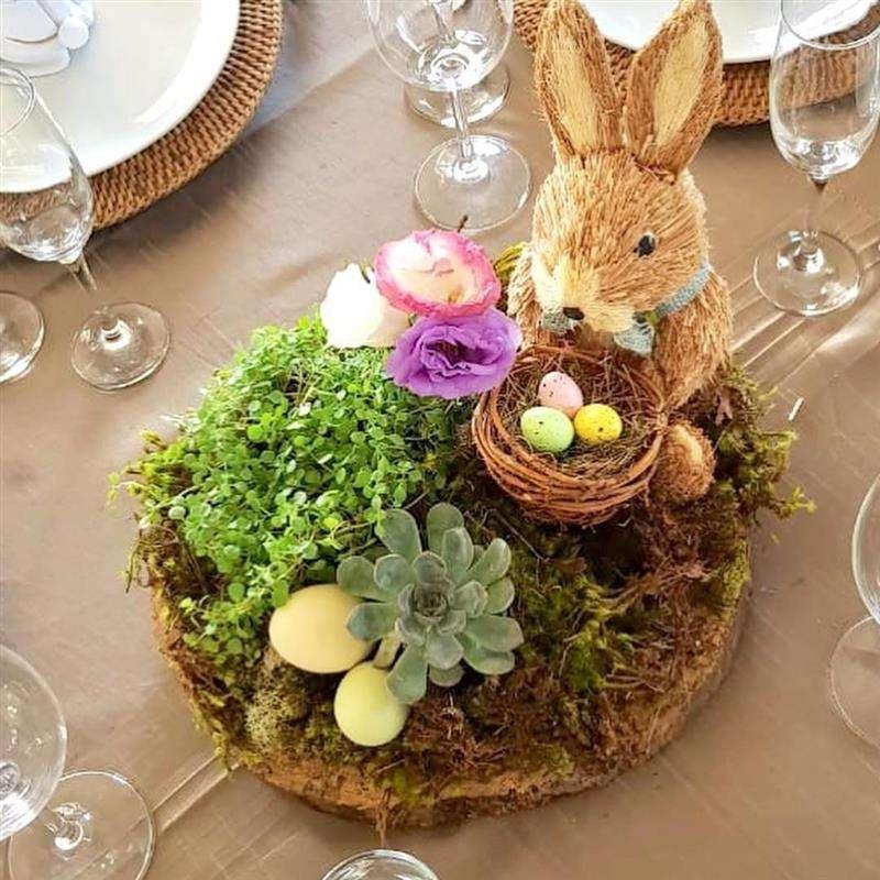 centro de mesa com plantas e suculentas