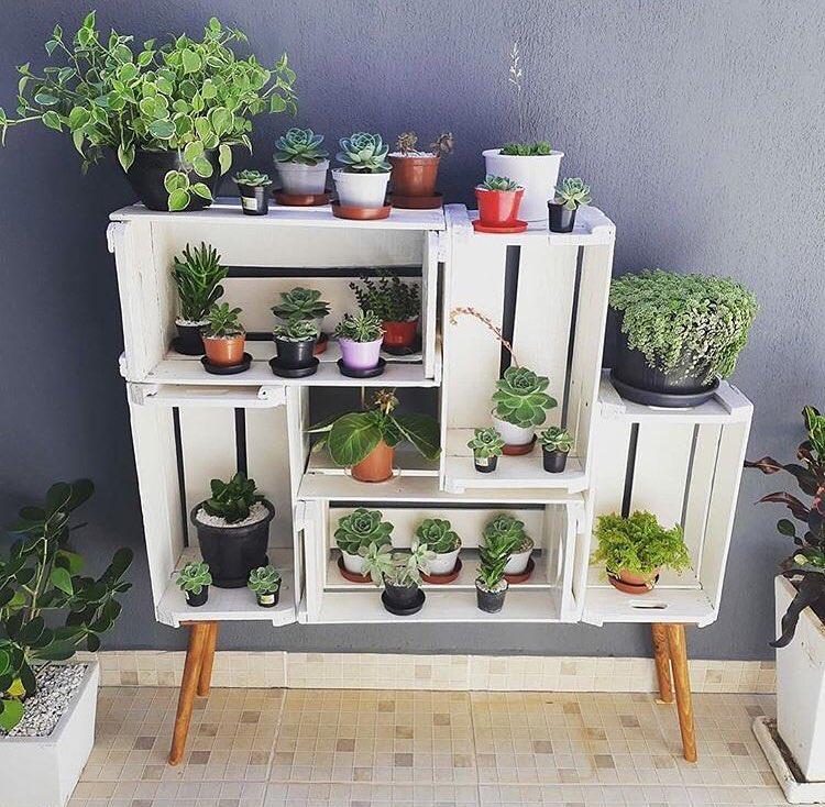 estante com caixotes para plantas