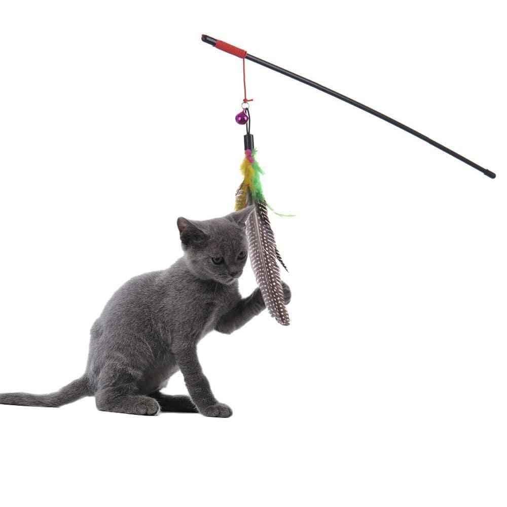 vara magica para gatos