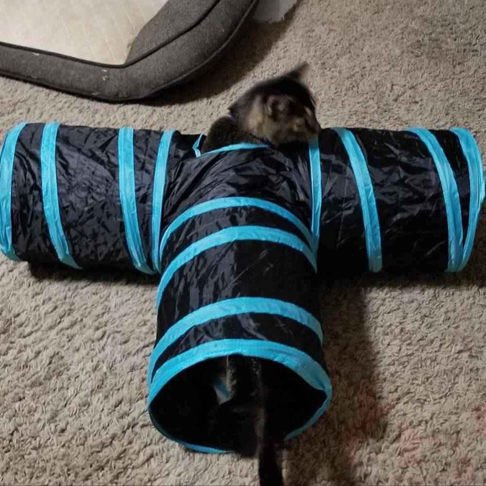 túnel para gatos brincarem