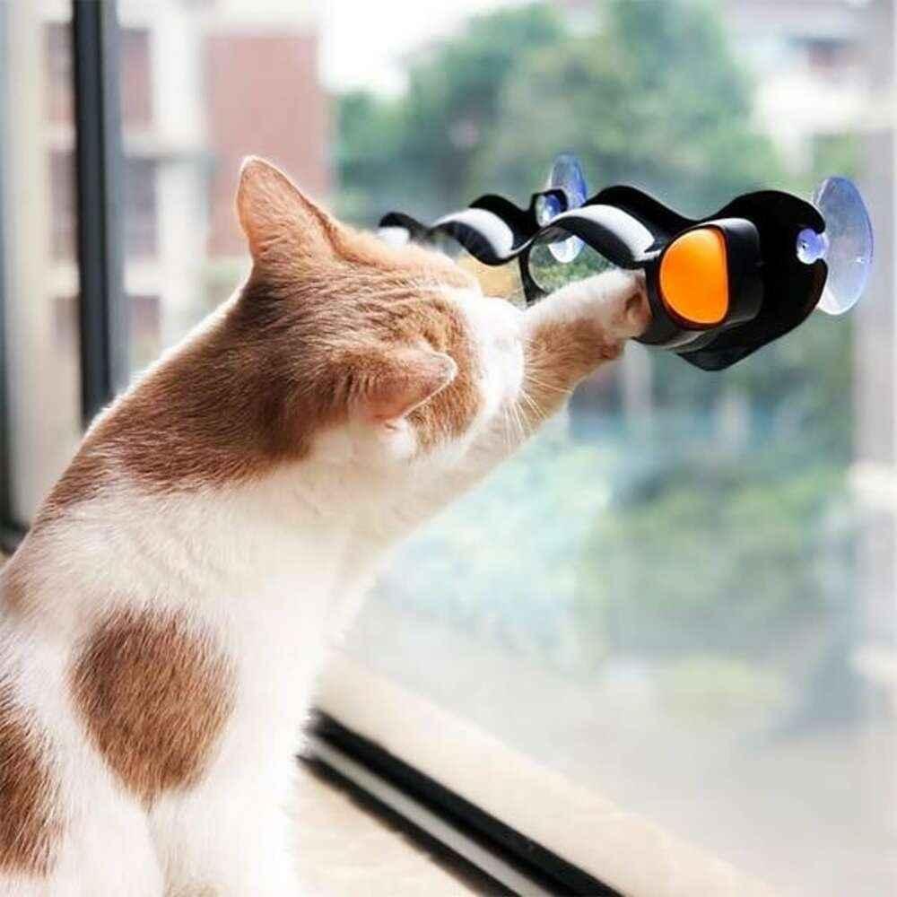 brinquedo com bola para gatos