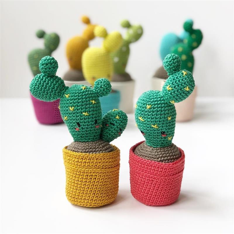 mini cactos com vasinhos coloridos