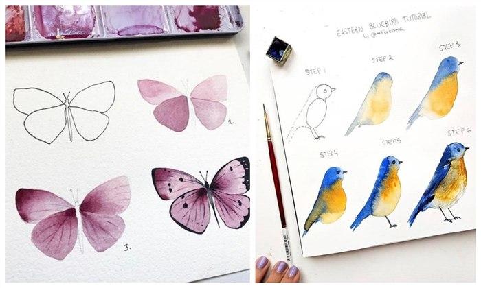 desenho de borboleta e passarinho