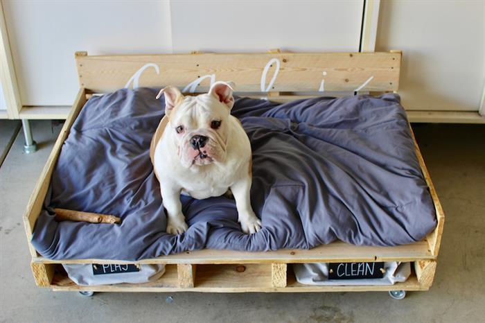 cama de palete para cachorro