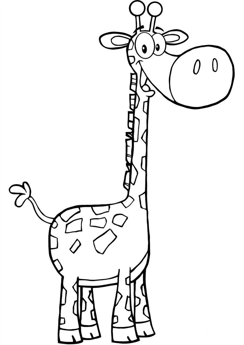 desenho de girafa em preto e branco