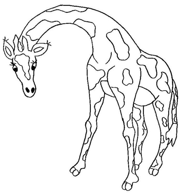 desenho de girafa passo a passo
