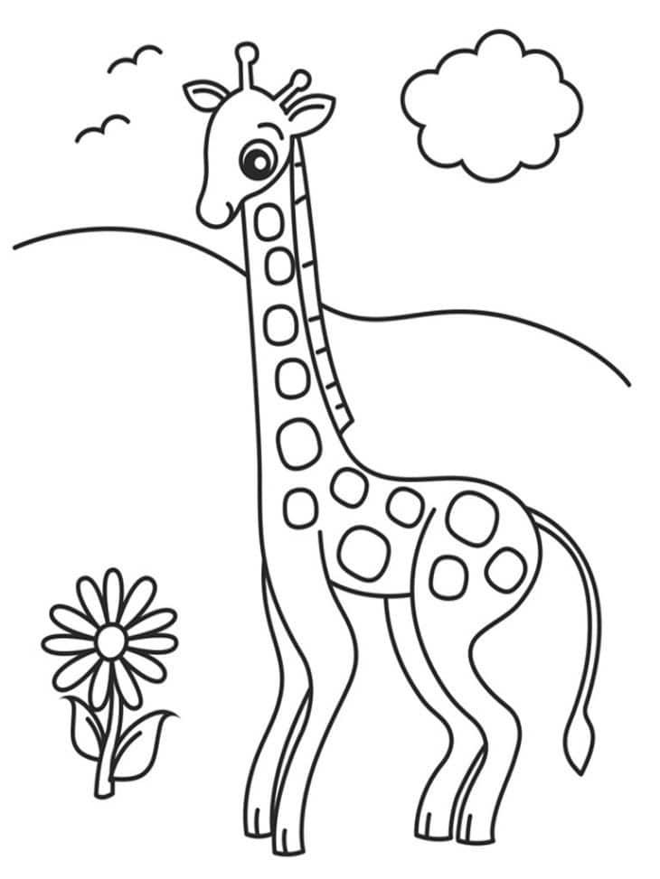 desenho de girafa para desenhar