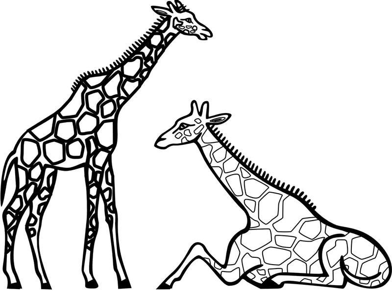 desenho de girafa sentada