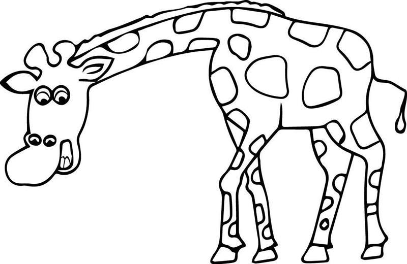 desenho de girafa facil