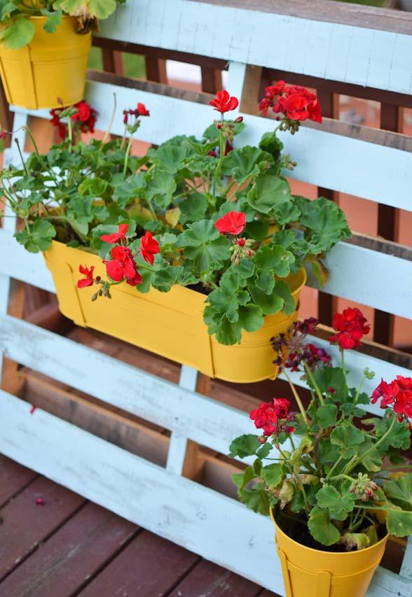 vasinhos de flores pendurados