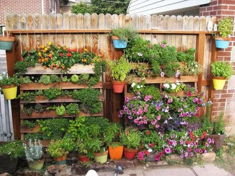 jardim com flores na parede