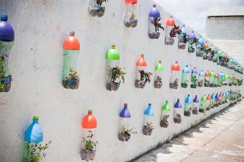jardim na parede
