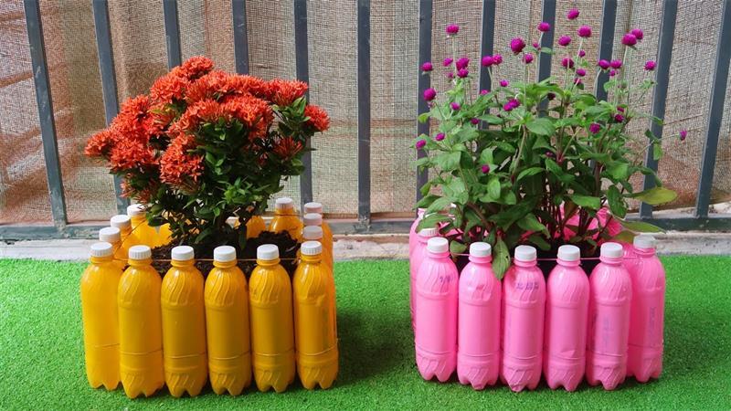 jardim com garrafa pet no chão