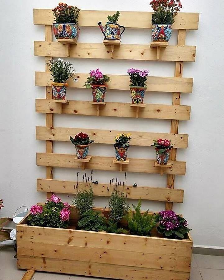 plantas na decoração da parede